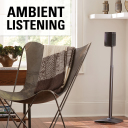 WSSA1-B1 Ambient Listening One Speaker